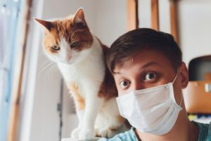 Can my cat catch coronavirus